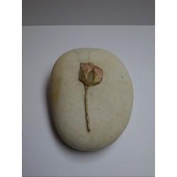 Piedra Decorativa con Flor